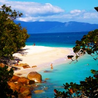 Welcome to Paradise: Fitzroy Island