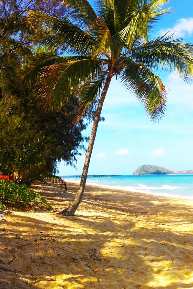 beachblog7